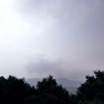 הערפל מתפזר